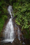 Waterfall in Park. Waterfall at Botanical Garden in Sri Lanka Royalty Free Stock Photo