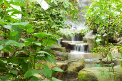 Waterfall in the park. Royalty Free Stock Images