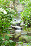 Waterfall in the park. Royalty Free Stock Photo