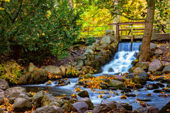 Waterfall in the park Stock Photos