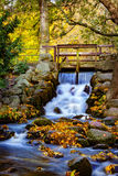 Waterfall in the park Royalty Free Stock Images