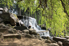 Waterfall in the park in the garden Royalty Free Stock Photography