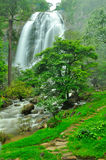 Waterfall with a pathway in green garden Stock Images