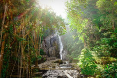 Waterfall. Peaceful waterfall in forest background Stock Photos