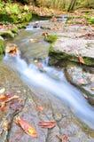 Waterfall. The peacful waterfall in the begining of fall season stock photos
