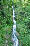 Waterfall in Pelling, Sikkim Stock Images