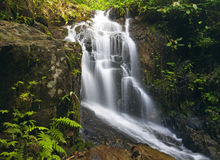 Waterfall Phuket, Thailand Royalty Free Stock Images