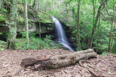 Waterfall in Phukradung Royalty Free Stock Photos