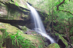 Waterfall in Phukradung Royalty Free Stock Image