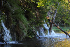 Waterfall on the Plitvice Lake Stock Images