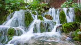 Waterfall. On Plitvice Lakes. Beautiful green landscape Stock Images