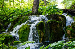 Waterfall in Plitvice Lakes park, Croatia Stock Images