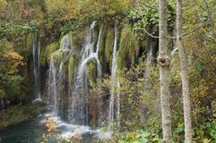 Waterfall in the Plitvice national park Royalty Free Stock Photo