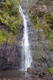 Waterfall. Polynesia. Tahiti Stock Image