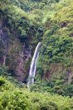 Waterfall. Polynesia. Tahiti Stock Photography
