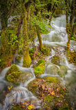 The waterfall portions. Waterfall portions, streams, like silk from top to bottom through the bushes, formed the beauty of the jade belt is general stock photos