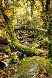 Waterfall in the portuguese royalty free stock images