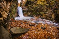 The Waterfall. Pruncea waterfall in a beautiful autumn day Royalty Free Stock Image