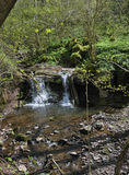 Waterfall at Pwll-y-Wrach Stock Image