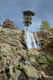 Waterfall Radule in the spring mountains of Corsica Royalty Free Stock Photo