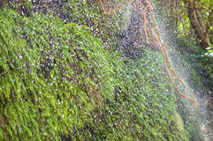 Waterfall rain Stock Photos