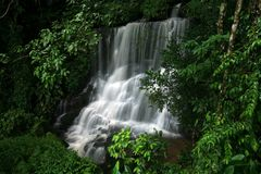Waterfall in the rain forest Stock Image