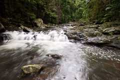 Waterfall in the rain forest. With some rocks in foreground Stock Image