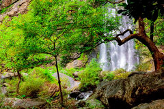 Waterfall in rain forest Royalty Free Stock Photography