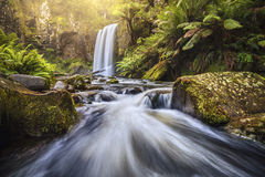 Waterfall in rain forest after heavy rain Royalty Free Stock Photo