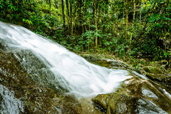 Waterfall in  rain forest jungle. Stock Image