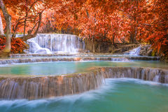 Waterfall in rain forest (Tat Kuang Si Waterfalls at Laos Royalty Free Stock Photography