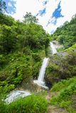 Waterfall in rain forest Stock Photo