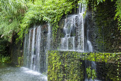 Waterfall in the Rain Forest Royalty Free Stock Photo