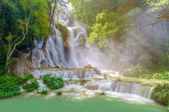 Waterfall in rain forest & x28;Tat Kuang Si Waterfalls at Luang praba Stock Photography