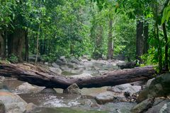 Waterfall after rain. waterfall in the forest. Waterfall in Chonburi, Thailand. waterfall after rain. waterfall in the forest Stock Image