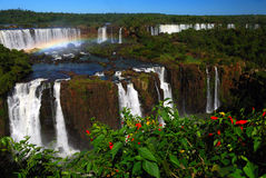 Waterfall and rainbow. A waterfall and rainbow in Iguazu Falls Royalty Free Stock Photos