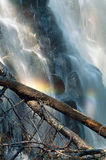 Waterfall with Rainbow. A waterfall with two logs in the forground and rainbow colors from the mist Royalty Free Stock Photos