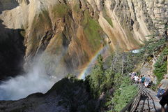 Waterfall and Rainbow. Beautiful rainbow and waterfall in Yellowstone Royalty Free Stock Photos