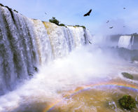 Between a waterfall and a rainbow fly huge Andean condors Stock Images
