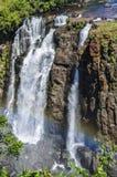 Waterfall with rainbow at Iguazu Falls,  Brazil Stock Images
