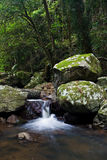 Waterfall in Rainforest. A small waterfall falling softly in a river flowing through a peaceful rainforest stock photos
