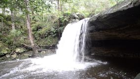 Waterfall rainforest. Beautiful Waterfall on forest natural Asia rainforest stock footage