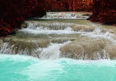 Waterfall in rainforest. cascade in forest. water flowing in tro. Pical jungle in spring Stock Photography