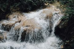 Waterfall in rainforest. cascade in forest. water flowing in tro. Pical jungle in spring Stock Image