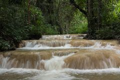 waterfall in rainforest. cascade in forest. water flowing in tro Royalty Free Stock Image