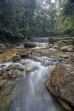 Waterfall in Rainforest Malaysia. Common view of waterfalls  in Selangor, Malaysia Stock Images