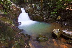 Waterfall in a rainforest at Sabah, Borneo Royalty Free Stock Photography