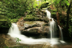 Waterfall in rainforest Royalty Free Stock Photos