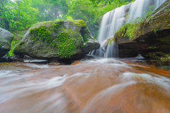 Waterfall in rainforest Royalty Free Stock Image