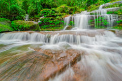 Waterfall in rainforest Royalty Free Stock Photo
